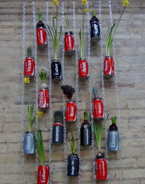Vertical garden with coca cola cans. After drinking soda from aluminum cans, you can recycle your soda cans to create interesting projects instead of tossing the empty cans into the garbage or recycling bin.