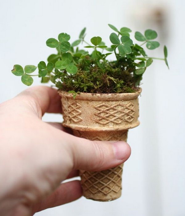 Ice cream cone planter.Plant seeds in ice cream cones and put it on the ground.How clever,It's biodegradable and is the perfect way to start a small garden.