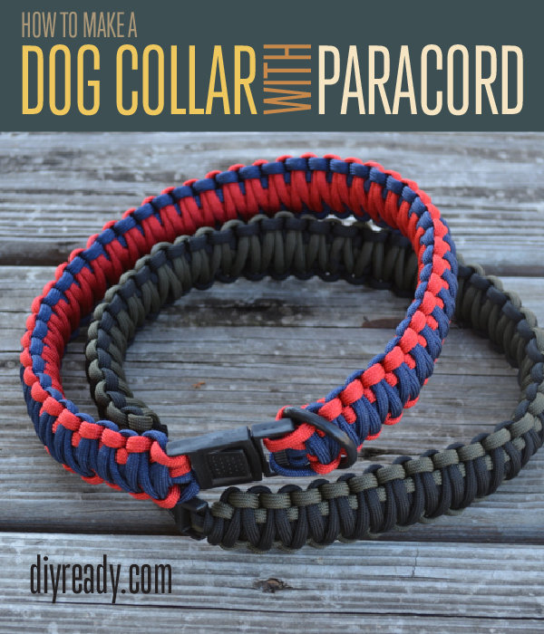 DIY Parcaord Dog Collar with a Side Release Buckle