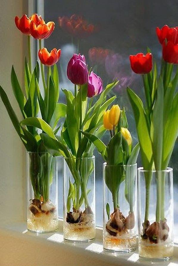 Tulips Flower Vase.
