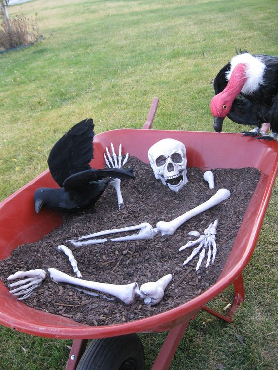 Bones in a Wheelbarrow .