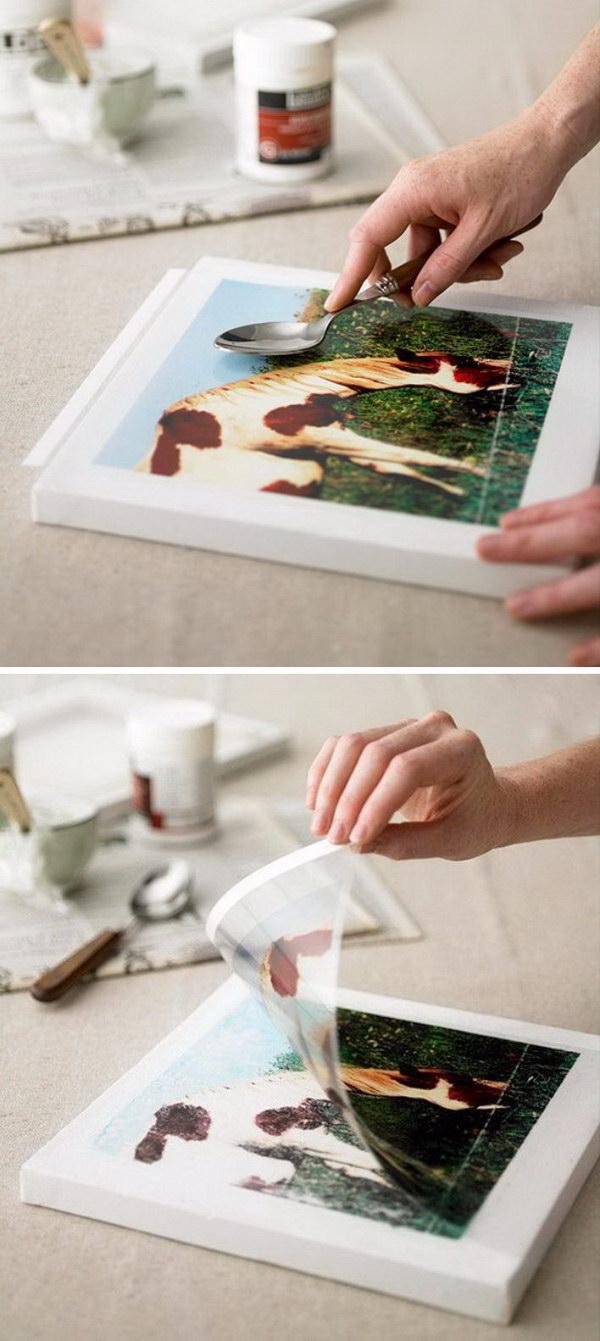 Projeto de transferência de imagens inspiradas na natureza.