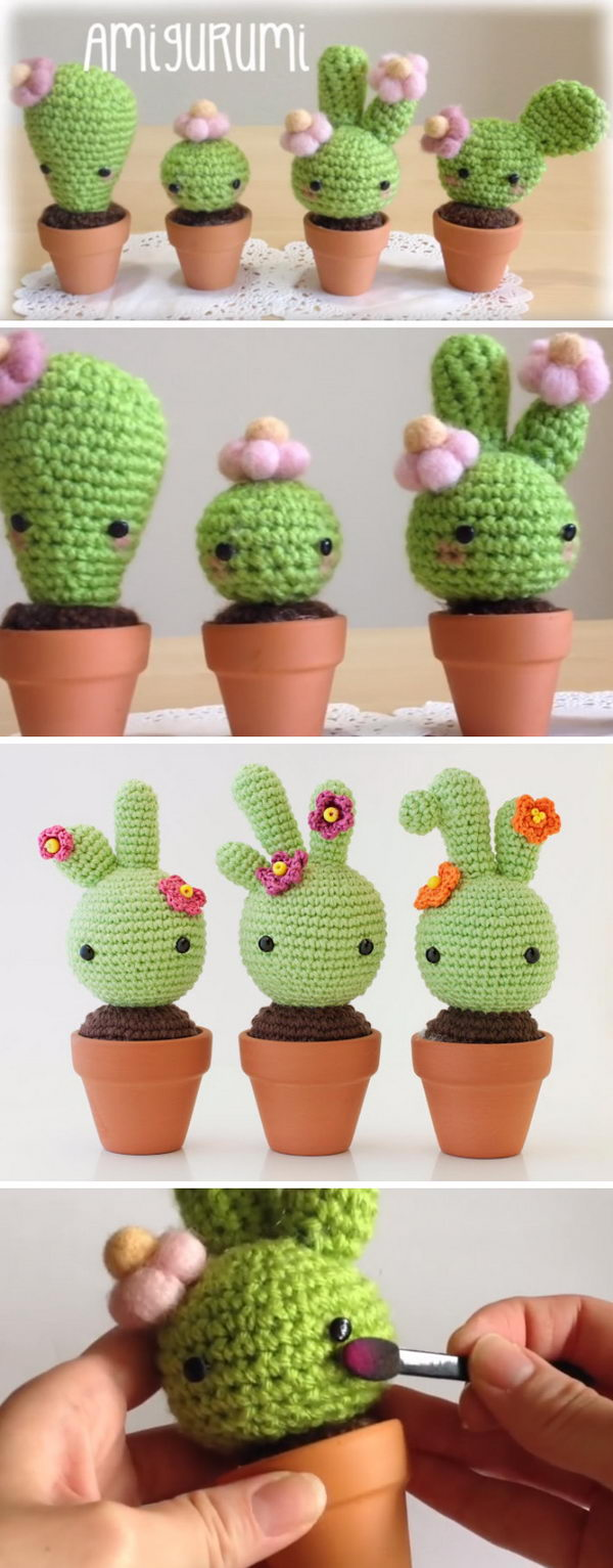 Baby Cactus.