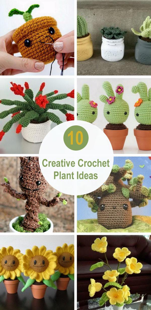 10 Creative Crochet Plant Ideas.