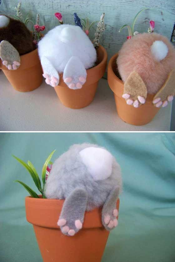 Curious little bunny pots.