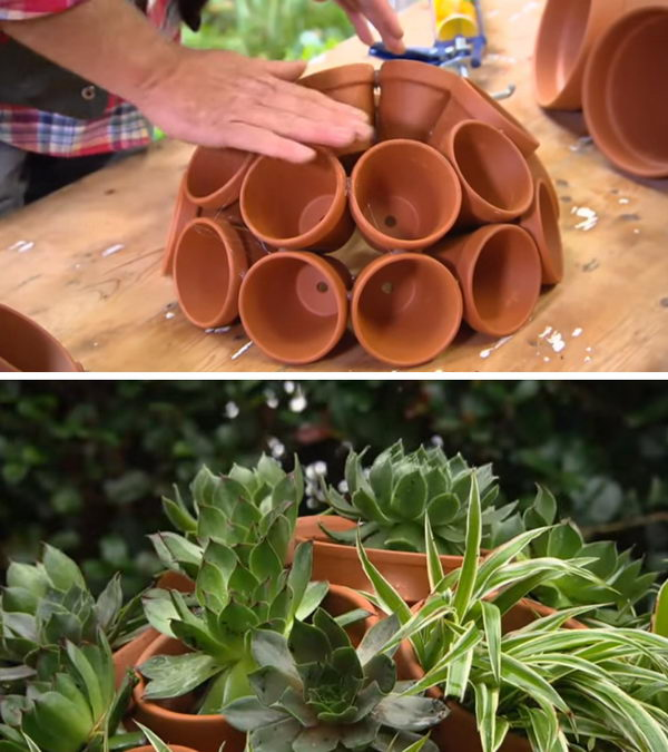 DIY Flower Clay Pot Succulent Sphere.