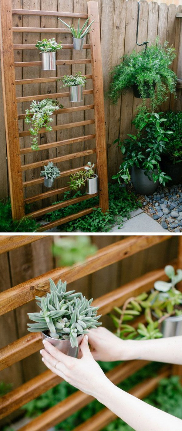 Outdoor Succulent Wall Accent.